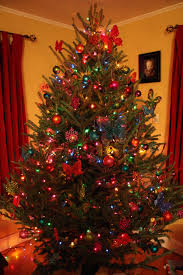 Colored Lights Christmas Tree Decorating Ideas Photo Album Home Images Of