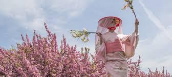 event spotlight sakura matsuri at brooklyn botanic garden