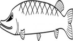 Simple Fish Outline Clip Art Clipart Library Free Clipart Images