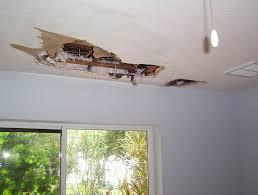 repair drywall ceiling water damage. Exellent Ceiling WaterDamagedMoldCeilingMerrittIsland To Repair Drywall Ceiling Water Damage C
