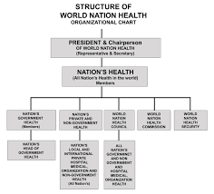 42 Unfolded World Health Organization Organizational Chart