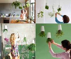 Creative of Design For Indoor Flowering Plants Ideas Creative Home  Decorating With Flowers And Plants Sky Planter