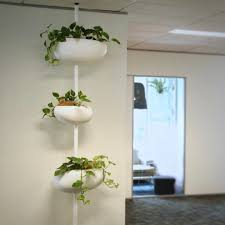 office pot plants. Exellent Office Office Pot Plants Making A Perfect Addition To The Is One Of Our  Serralunga In Office Pot Plants