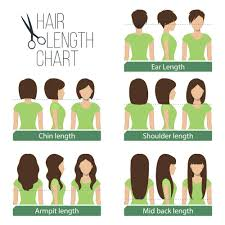 5 Womens Hair Lengths Explained Charts Diagrams