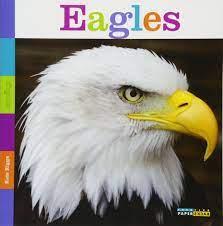 Seedlings: Eagles: Riggs, Kate: 9781628320411: Amazon.com: Books