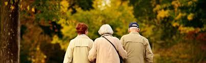 notre dame de la providence sens maison de retraite maison de retraite privée unité alzheimer ehpad