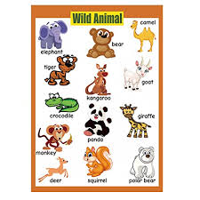 4 Pieces Laminated Educational Preschool Posters For