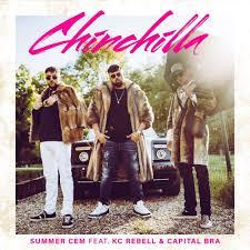 Summer Cem Chinchilla Lyrics Genius Lyrics