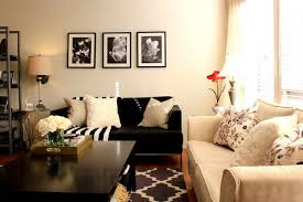 Decorating A Small Living Captivating Ideas To Decorate A Small Living Room Amazing Pictures