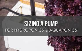 Taco Pump Sizing Chart Sizing A Pump For Hydroponics Or Aquaponics Upstart University