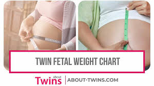 Twin Fetal Weight Chart Estimated Growth Week By Week