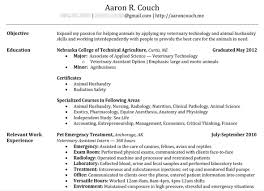 The Perfect Resume Examples Cool A Perfect Resume Free Resume Templates 48