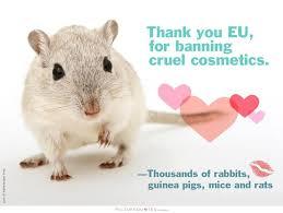 Animal Cruelty Quotes   Animal Cruelty Sayings   Animal Cruelty ...