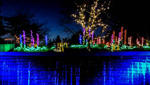 Bellevue Christmas Lights Botanical Garden Ring In The Season With These Eastside Holiday Events 425