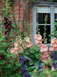 Small Picture How to create a cottage garden Period Living