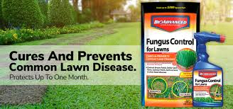 Image For Lawns Lawn Fungus Control 10 Lb Ready To Use Lawn Fungus Control Bag