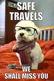 safe travels we shall miss you hipster dog