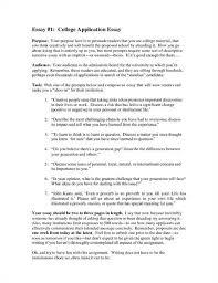 university entrance essay examples example college application   university entrance essay examples 18
