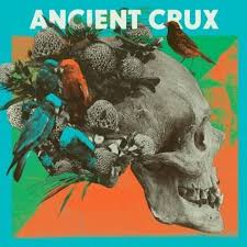 Ancient crux in teen dreams