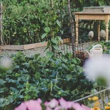 growing a vegetable garden might be