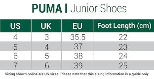 Puma Jr Ignite Pwradapt Shoes Black
