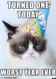grumpy cat i had a birthday once. Exellent Grumpy Grumpy Cat Birthday To Grumpy Cat I Had A Birthday Once