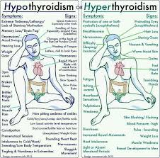 The Difference Between Hypothyroidism Vs Hyperthyroidism