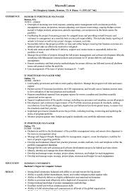 Portfolio Manager Resume Sample IT Portfolio Manager Resume Samples Velvet Jobs 3