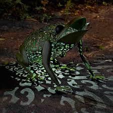 Garden Edging With Solar Lights In Stock Now  GreenfingerscomSolar Frog Lights