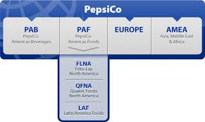 Pepsico Structure Chart Pepsico Structure Chart Pepsi Strategic Management