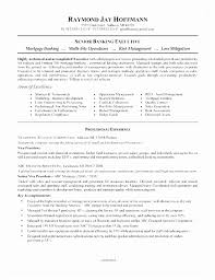 Quality Assurance Analyst Resume Adorable Qa Analyst Resume Sample Unique Data Analyst Resume Sample Luxury