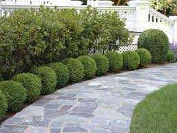 Small Picture 3699 best Landscape My Land images on Pinterest Gardening