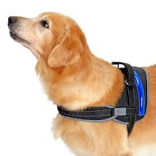 Designed 4 Dogs Heavy Duty Reflective Dog Harness With Safety Features
