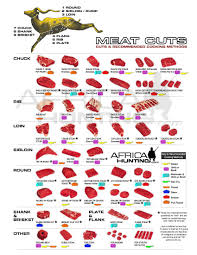 Wild Game Meat Cutting Chart Shot Placement Reducing Damage To The Meat In 2019