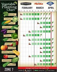 vegetable planting chart for zone 7