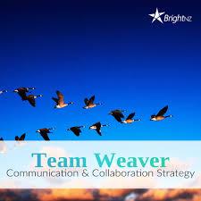 brightnz team weaver brightnz team weaver