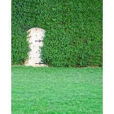 Secret Garden Printed Backdrop  Express