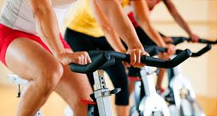 Gym Exercise Planner Fitness Quiz Tips On Cardio Strength Training And Getting