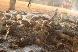 opsrilanka : In the rememberance of Massacre on Tamils in Tamil Eelam