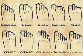 Foot History Chart Your Foot Shape And Your Genealogy Family Genealogy