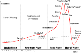 Bitcoin Phases Of A Mania And A New Paradigm