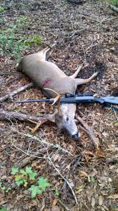 Weatherby Nation