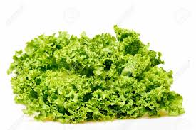 Lettuce Leaf Or Green Leafy Vegetables Isolated On White Background