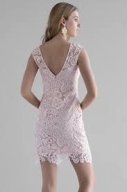 Genova Lace Dress In Blush Francesca S