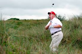 Image result for trump golf course image