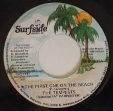 The Tempests featuring Pat Carpenter - The First One On The Beach (1981,  Vinyl) | Discogs