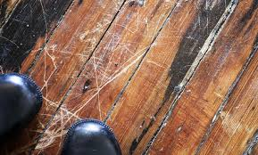 diy first aid for damaged hardwood floors