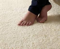 Carpet cleaning Northern beaches Bond Cleanings