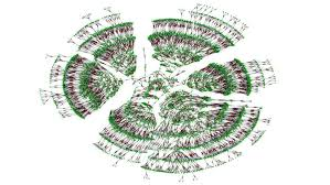 This May Be The Worlds Largest Family Tree Smart News
