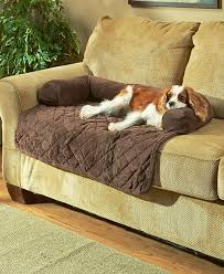 sofa pet covers. Wonderful Best 25 Dog Couch Cover Ideas On Pinterest Pet Throughout Sofa For Dogs Attractive Covers S